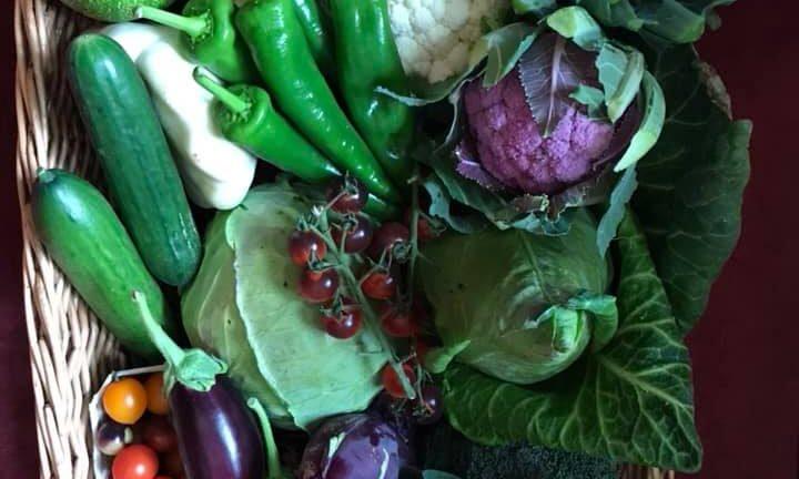 purple-veg-box